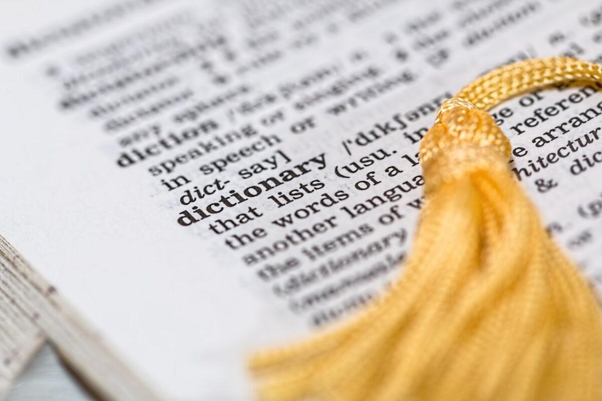 Typy kursów językowych dla firm – co oferują szkoły językowe?